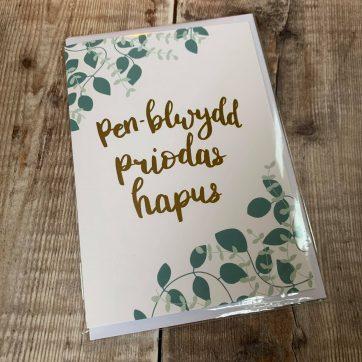 Welsh Wedding, Engagement & Anniversary